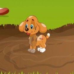 Um maravilhoso e divertido jogo para você poder cuidar do cachorrinho. São muitas etapas para que o bichinho fique muito cheiroso. O primeiro passo é encher a banheira e caprichar na espuma para...