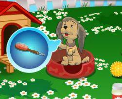 Cuidar dos filhotes de cachorro no pet shop
