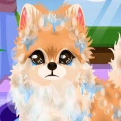Que tal você agora poder cuidar do cachorrinho no pet shop? Dê banho, e deixe ele muito cheiroso, depois escolha os acessórios para esse bichinho ficar muito charmoso.