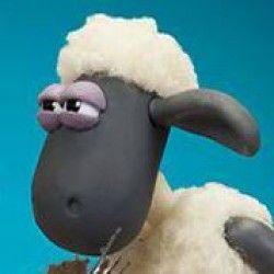 Números das ovelhas