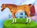 Cavalos salão de beleza