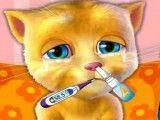 Gato virtual no médico