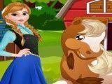 Anna cuidar do cavalo