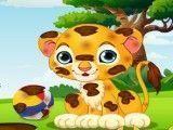 Banho do pequena leão