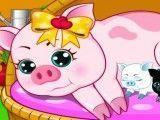 Cuidar dos porcos