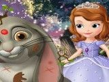 Princesa Sofia cuidar do coelho