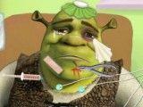 Cuidar do Shrek na ambulância