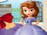 Princesa Sofia lavar carro