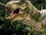 Achar erros Jurassic Park