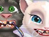 Angela e Tom cuidar dos dentes