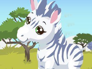 Cuidar do filhote de zebra