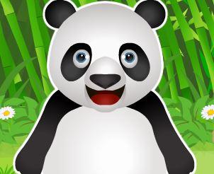 Cuidar do Panda