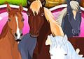 Cuidar dos cavalos