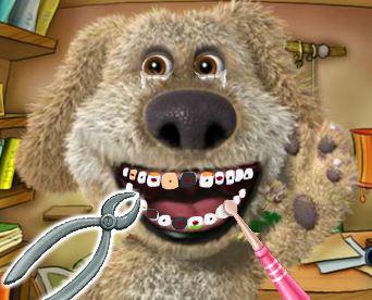 Cuidar dos dentes do cachorrinho