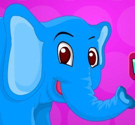 Cuidar dos machucados do elefante