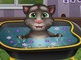 Gato Tom bebê na banheira
