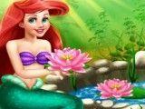 Ariel cuidar da lagoa