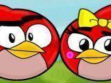 Pintar casal Angry Birds