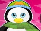 Pinguim banho e cuidados
