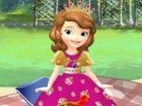 Princesa Sofia decorar piquenique