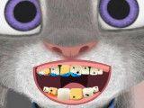 Dentista da Judy