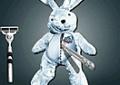 Fazer cirurgia no coelho
