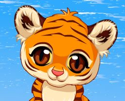 Filhote de tigre cuidar