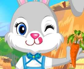 Roupas para coelhos